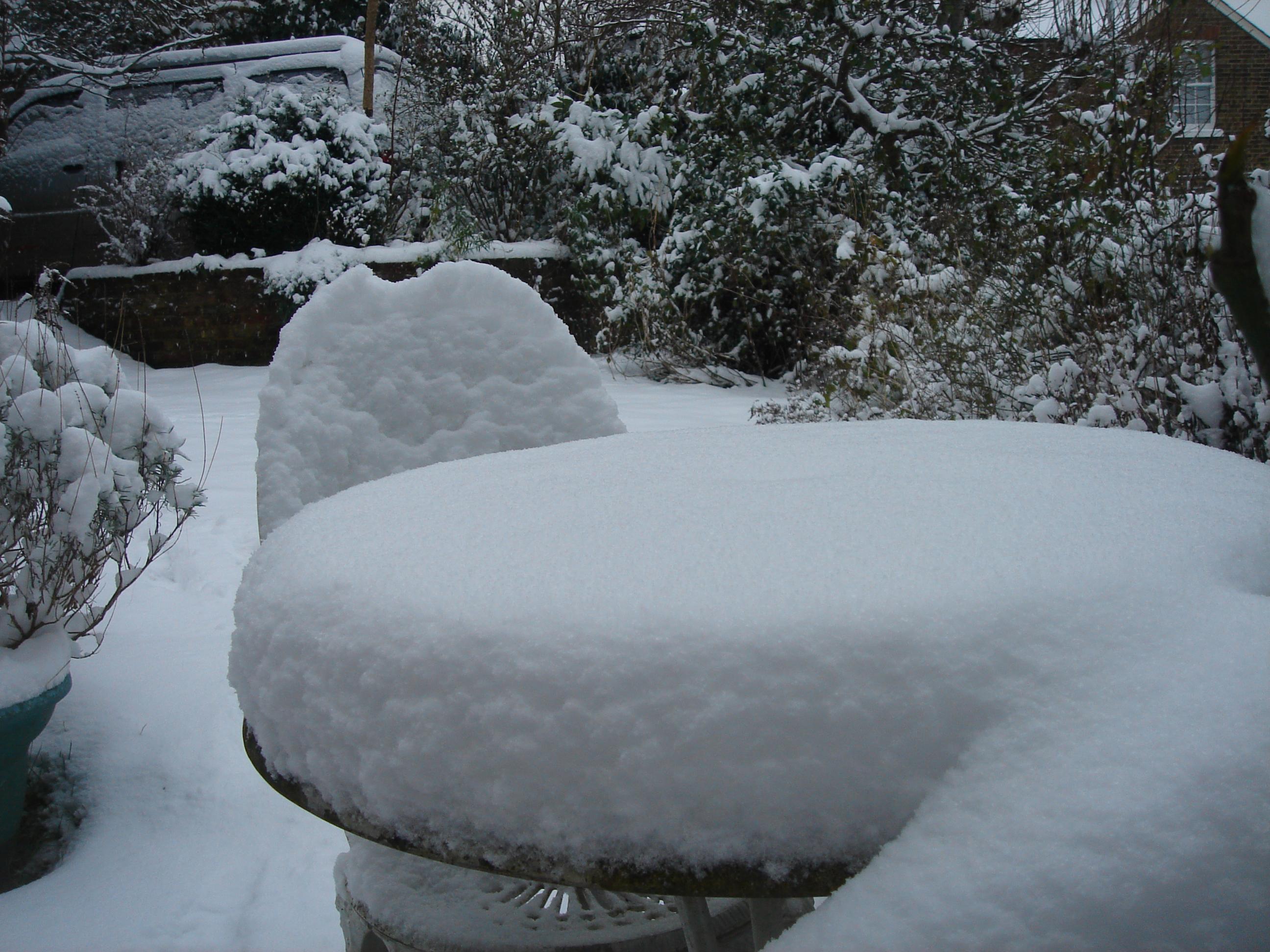 Snowy garden 3