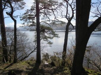Lake view reduced