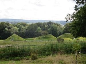 Life mounds 1